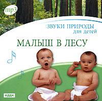 Звуки природы для детей. Малыш в лесу (mp3) музыкальные диски иддк звуки природы вечерняя прохлада