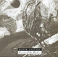 Дэвид Сильвиан David Sylvian. Secrets Of The Beehive willaim r newman secrets of nature – astrology