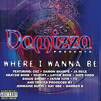Damizza Presents... Where I Wanna Be irfi4905 to 220f