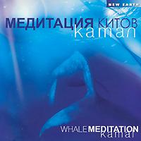 Kamal Камал. Медитация китов алексей иванов чувство вины в рекламе как побудить клиентов к покупке