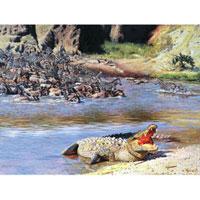 Картина-репродукция Крокодил, без рамки, 40 х 30 см 164298-972Картина-репродукция без рамки Крокодил дополнит интерьер любого помещения, а также может стать изысканным подарком для ваших друзей и близких. Благодаря оригинальному дизайну картина может использоваться для оформления любых интерьеров. Картина выполнена на холсте масленым рисунком по шаблону. Такая картина - вдохновляющее декоративное решение, привносящее в интерьер нотки творчества и изысканности! Характеристики:Материал: холст, дерево. Размер: 40 см х 30 см х 1,5 см. Артикул: 16429. Изготовитель: Китай.