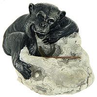 Фигурка декоративная ОбезьянкаTHN132NЗабавная декоративная фигурка, выполненная в виде симпатичной обезьянки, станет оригинальным украшением интерьера и вызовет улыбку у каждого, кто ее увидит. Оригинальный сувенир отлично подойдет в качестве подарка близким или друзьям. Характеристики: Материал: полистоун. Размер: 8,5 см х 6,5 см х 7,5 см. Артикул: 22638.
