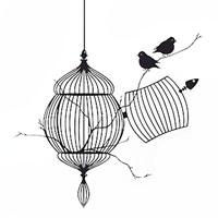 Стикер Paristic Птицы на свободе, 34 х 40 см300196Добавьте оригинальность вашему интерьеру с помощью необычного стикера Птицы на свободе. Изображение на стикере имитирует птиц, вылетевших из клетки.Великолепное исполнение добавит изысканности в дизайн.Необыкновенный всплеск эмоций в дизайнерском решении создаст утонченную и изысканную атмосферу не только спальни, гостиной или детской комнаты, но и даже офиса. Стикервыполнен из матового винила - тонкого эластичного материала, который хорошо прилегает к любым гладким и чистым поверхностям, легко моется и держится до семи лет, не оставляя следов.Сегодня виниловые наклейки пользуются большой популярностью среди декораторов по всему миру, а на российском рынке товаров для декорирования интерьеров - являются новинкой.Paristic - это стикеры высокого качества. Художественно выполненные стикеры, создающие эффект обмана зрения, дают необычную возможность использовать в своем интерьере элементы городского пейзажа. Продукция представлена широким ассортиментом - в зависимости от формы выбранного рисунка и от Ваших предпочтений стикеры могут иметь разный размер и разный цвет (12 вариантов помимо классического черного и белого). В коллекции Paristic-авторские работы от урбанистических зарисовок и узнаваемых парижских мотивов до природных и графических объектов. Идеи французских дизайнеров украсят любой интерьер: Paristic -это простой и оригинальный способ создать уникальную атмосферу как в современной гостиной и детской комнате, так и в офисе. В настоящее время производство стикеров Paristic ведется в России при строгом соблюдении качества продукции и по оригинальному французскому дизайну. Характеристики:Размер стикера:34см х40 см. Комплектация: виниловый стикер; инструкция. Производитель: Россия.