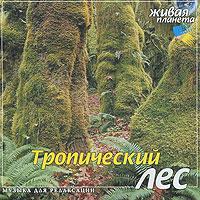 Тропический лес. Музыка для релаксации вторжение в ссср мелодии и ритмы зарубежной эстрады центрполиграф