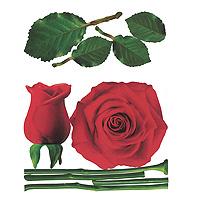 Виниловая наклейка Rose, 57 см х 70