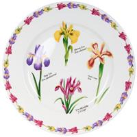 Тарелка керамическая Ирисы, диаметр 27 см115510Керамическая тарелка Ирисы станет достойным украшением вашего интерьера.Тарелка оформлена изображением цветков ириса. Тарелка - наиболее распространенный вид столовой посуды, именно ею мы чаще всего пользуемся во время приема пищи. Оригинальный рисунок поднимет настроение вам и вашим близким. Характеристики:Материал:керамика. Диаметр тарелки: 27 см. Производитель: Китай. Размер упаковки: 27,5 см х 27 см х 3 см. Артикул: IMA0180H-A93AL. Изделия торговой марки Imari произведены из высококачественной керамики, основным ингредиентом которой является твердый доломит, поэтому все керамические изделия Imari - легкие, белоснежные, прочные и устойчивы к высоким температурам. Высокое качество изделий достигается не только благодаря использованию особого сырья и новейших технологий и оборудования при изготовлении посуды, но также благодаря строгому контролю на всех этапах производственного процесса. Нанесение сверкающей глазури, не содержащей свинца, придает изделиям Imari превосходный блеск и особую прочность.Красочные и нежные современные декоры Imari - это результат профессиональной работы дизайнеров, которые ежегодно обновляют ассортимент и предлагают покупателям десятки новый декоров. Свою популярность торговая марка Imari завоевала благодаря высокому качеству изделий, стильным современным дизайнам, широчайшему ассортименту продукции, прекрасным подарочным упаковкам и низким ценам. Все эти качества изделий сделали их безусловным лидером на рынке керамической посуды.