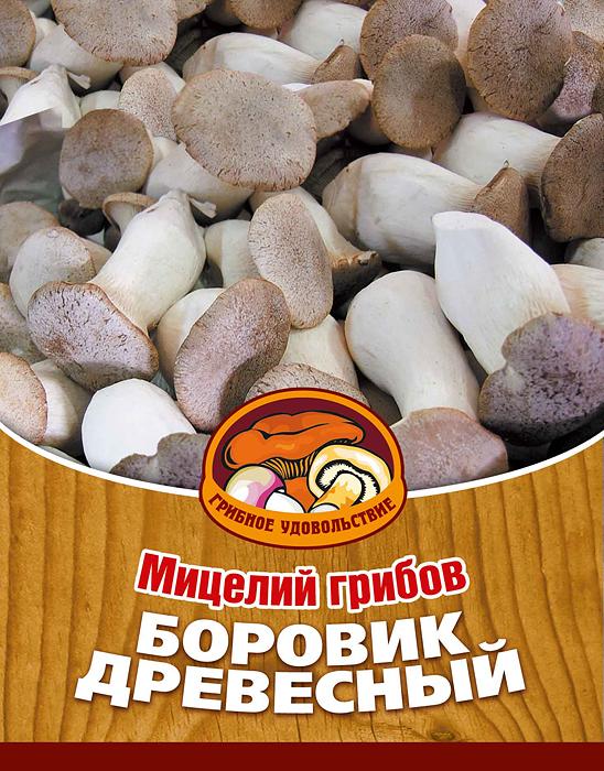 Мицелий грибов Боровик древесный, 16 древесных палочек10010Боровик древесный весьма популярен в Восточной Азии и постепенно завоевывает Европу. Гриб обладает высокими кулинарными свойствами: его можно жарить, отваривать для первых блюд и салатов, жарить на гриле, использовать для салатов в свежем виде, а так же для различных соусов и грибной икры. Гриб хорошо сочетается в блюдах с рыбой, мясом, морепродуктами и овощами. Благодаря мицелию грибов Боровик древесный теперь вы без труда сможете вырастить любимые грибы у себя в саду или дома. И уже через 3-6 месяцев после посадки у вас появится первый урожай грибов. За один год можно собрать от 2 до 4 кг с каждого бревна. Для того чтобы вырастить грибы вам понадобится: мицелий Грибное удовольствие, бревно лиственных пород (береза, тополь, ива, клен), дрель. Благоприятное время для посадки мицелия Боровик древесный - в природных условиях с апреля по октябрь, в помещении - круглый год.Плодоносят мицелии в среднем от 3 до 5 лет, в зависимости от сорта грибов. Характеристики:Материал:древесная палочка. Размер упаковки:11 см х 15,5 см. Артикул:10007.