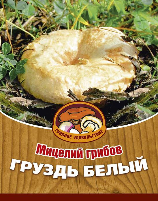 Мицелий грибов Груздь белый, субстрат, 60 мл мицелий грибов груздь белый субстрат 60 мл