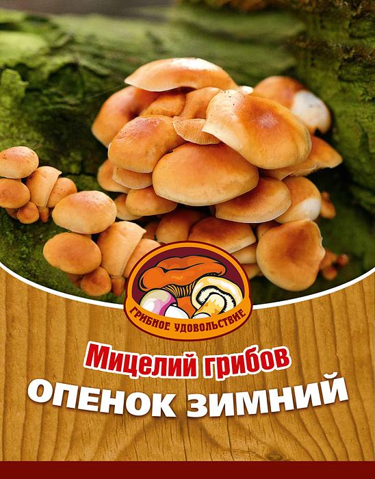 Мицелий грибов Опенок зимний, 16 древесных палочек