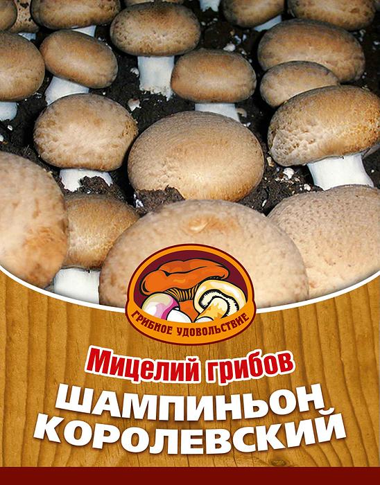 Мицелий грибов Шампиньон королевский, субстрат. Объем 60 мл мицелий грибов груздь белый субстрат 60 мл