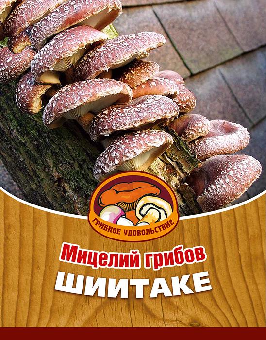 Мицелий грибов Шиитаке, 16 древесных палочекCLP446Шиитаке - в Японии, Китае и Корее их считают самыми вкусными и необыкновенно целебными грибами. Лечебные свойства: повышает иммунитет, мужскую потенцию, нормализует кровяное давление, имеет противоопухолевые свойства.Благодаря мицелию грибов Шиитаке теперь вы без труда сможете вырастить любимые грибы у себя в саду или дома. И уже через 5-9 месяцев после посадки у вас появится первый урожай грибов. За один год можно собрать от 4 до 6 кг с каждого бревна. Для того чтобы вырастить грибы вам понадобится: мицелий Грибное удовольствие, бревно или палка лиственных пород (бук, тополь, береза, ива, клен, рябина и плодовые деревья), дрель. Благоприятное время для посадки мицелия Шиитаке - в природных условиях с апреля по октябрь, в помещении - круглый год.Плодоносят мицелии в среднем от 3 до 5 лет, в зависимости от сорта грибов. Характеристики:Материал:древесная палочка. Размер упаковки:11 см х 15,5 см. Артикул:10010.