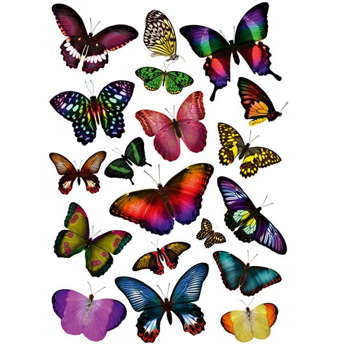 Украшение для стен и предметов интерьера Сказочные бабочкиAF 03127Украшение для стен и предметов интерьера Сказочные бабочки поможет вам украсить интерьер вашего дома и проявить индивидуальность.Декоретто - уникальный способ легко и быстро оживить интерьер, добавить в него уют и радость. Для вас открываются безграничные возможности проявить творчество и фантазию, придумать оригинальный дизайн, придать новый вид стенам и мебели. В коллекции Декоретто вы найдете украшения для любых городских и дачных интерьеров: детских, гостиных, спален, кухонь, ванных комнат. Особенности украшений Декоретто: изготовлены из экологически безопасной самоклеющейся пленки с водоотталкивающей поверхностью;быстро и легко наклеиваются на обои, крашеные стены, дерево, керамическую плитку, металл, стекло, пластик;при необходимости удобно снимаются, не оставляют следов и не повреждая поверхность (кроме бумажных обоев);специальный слой защищает поверхность от влаги и выгорания. Характеристики: Материал: самоклеющаяся пленка. Размер листа: 67 см x 47 см. Артикул: AE 5001.Изготовлено в России по лицензии Ascott Group (Франция).