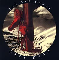 Кейт Буш Kate Bush. The Red Shoes the terror presidency – law and judgement inside the bush administration