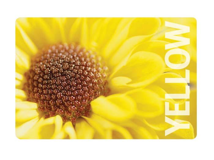 Салфетка под горячее Цветок, цвет: желтый, 44 см х 30 смS03301004Прямоугольная подставка под посуду Цветок предназначена для сервировки стола. Подставка выполнена из полипропилена с оригинальным цветочным рисунком. Характеристики:Материал: полипропилен. Размер: 44 см х 30 см. Изготовитель: Италия. Артикул: 2813.
