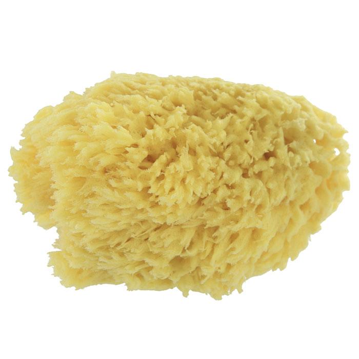 Губка для тела Riffi, натуральная, средиземноморская. 3352 riffi повязка для волос цвет коралловый