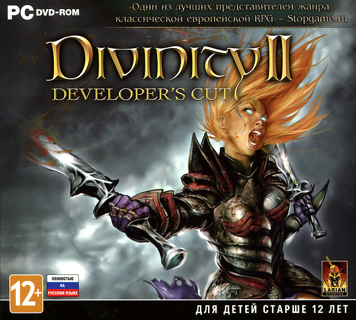 Divinity II. Developer's Cut