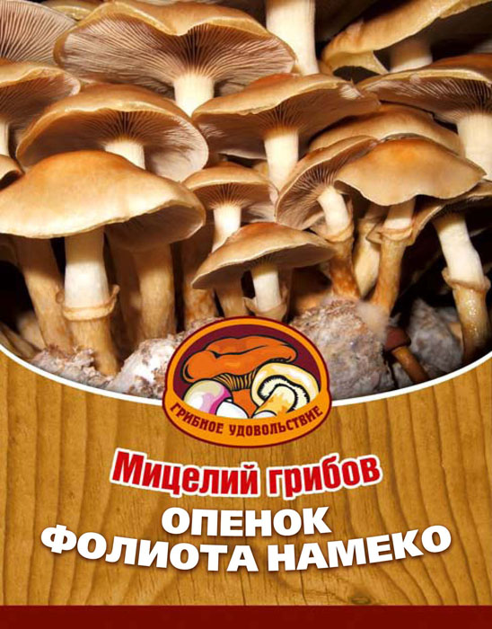 Мицелий грибов Опенок Фолиота Намеко, на 16 древесных палочках6.295-875.0Опенок Фолиота Намеко - японский вариант рыжиков или опят. У этого гриба прекрасный вкус и текстура. По мнению японцев, главное достоинство этих грибов заключается именно в их мягкости и скользкости. Это ощущение, может быть, с точки зрения европейца и экзотично, но оно стоит того, чтобы его испытать. Благодаря мицелию грибов Фолиота Намеко теперь вы без труда сможете вырастить любимые грибы у себя в саду или дома. И уже через 3-5 месяцев после посадки у вас появится первый урожай грибов. За один год можно собрать от 3 до 6 кг с каждого бревна. Для того чтобы вырастить грибы вам понадобится: мицелий Опенок Фолиота Намеко, бревно или палка лиственных пород (бук, тополь, береза, ива, клен, рябина и плодовые деревья) без признаков гнили. Благоприятное время для посадки мицелия Опенок Фолиота Намеко - в природных условиях с апреля по октябрь, в помещении - круглый год.Плодоносят мицелии волнами, до 3-4 лет на мягкой древесине, 5-7 лет на твердой. Характеристики:Материал:древесная палочка. Размер упаковки:11 см х 15,5 см х 1 см. Артикул:10039.