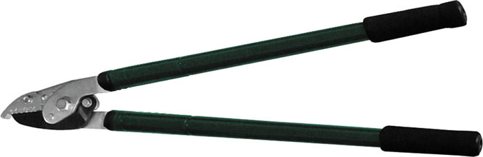 Сучкорез FIT с телескопическими рукоятками, 930 мм391602Сучкорез FIT предназначен для обрезания толстых веток в саду. Это необходимый инструмент для любого дачника. Инструмент с телескопическими ручками облегчит работу при срезании высоко расположенных веток. Характеристики:Материал:сталь, ПВХ. Размеры сучкореза:93 см х 26,5 см х 3,5 см. Размер упаковки:93 см х 26,5 см х 3,5 см.