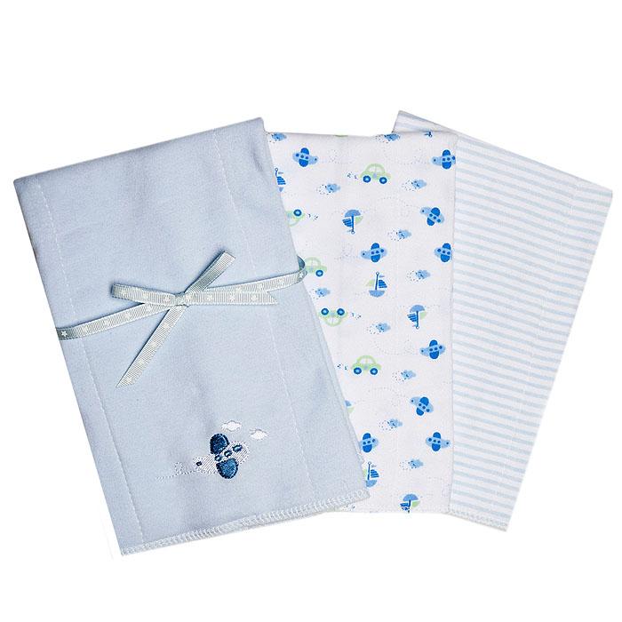 Набор салфеток для кормления Spasilk, двуслойные, цвет: голубой, 3 шт, 30 см х 43 см набор салфеток для купания spasilk 23 см х 23 см цвет голубой 10 шт