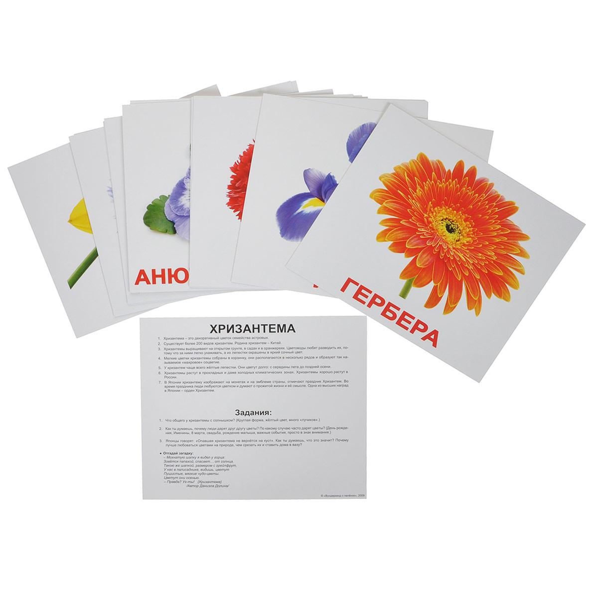 """Набор обучающих карточек """"Цветы"""" предназначен для занятий с детьми. Он содержит 20 карточек с изображениями различных цветов с подписями, а также фактами и заданиями на обратной стороне карточек. Просмотр таких карточек позволяет ребенку быстро усвоить названия цветов, запомнить, как они пишутся, развивает у него интеллект и формирует фотографическую память."""
