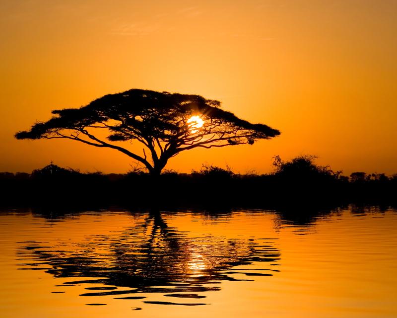 Картина на стекле Postermarket Африканский закат, 50 х 40 см28x40 OZ207-50404Картина на стекле Postermarket - это новое слово в оформлении интерьера. Изделие выполнено из закаленного стекла, что обеспечивает устойчивость к внешним воздействиям, защиту от влаги и долговечность. Картина оформлена африканским пейзажем. С задней стороны имеется петелька для подвешивания к стене. Стильный, современный дизайн, а также яркие и насыщенные цвета сделают эту картину прекрасным дополнением интерьера комнаты.