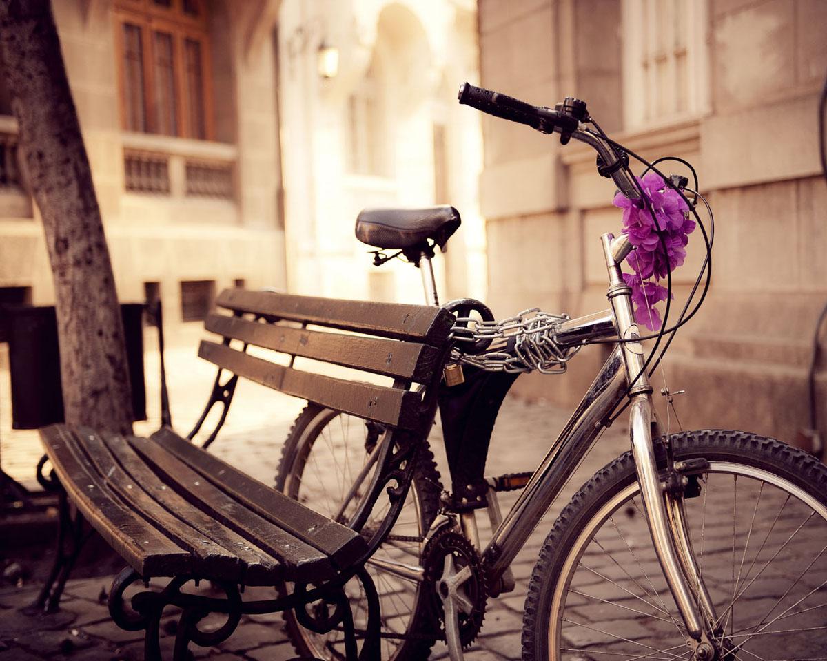 Картина на стекле Postermarket Велосипед, 50 см х 40 смБрелок для сумкиКартина на стекле Postermarket - это новое слово в оформлении интерьера. Изделие выполнено из закаленного стекла, что обеспечивает устойчивость к внешним воздействиям, защиту от влаги и долговечность. Картина оформлена красочным изображением велосипеда, привязанного к скамейке. С задней стороны имеется петелька для подвешивания к стене. Стильный, современный дизайн, а также яркие и насыщенные цвета сделают эту картину прекрасным дополнением интерьера комнаты.