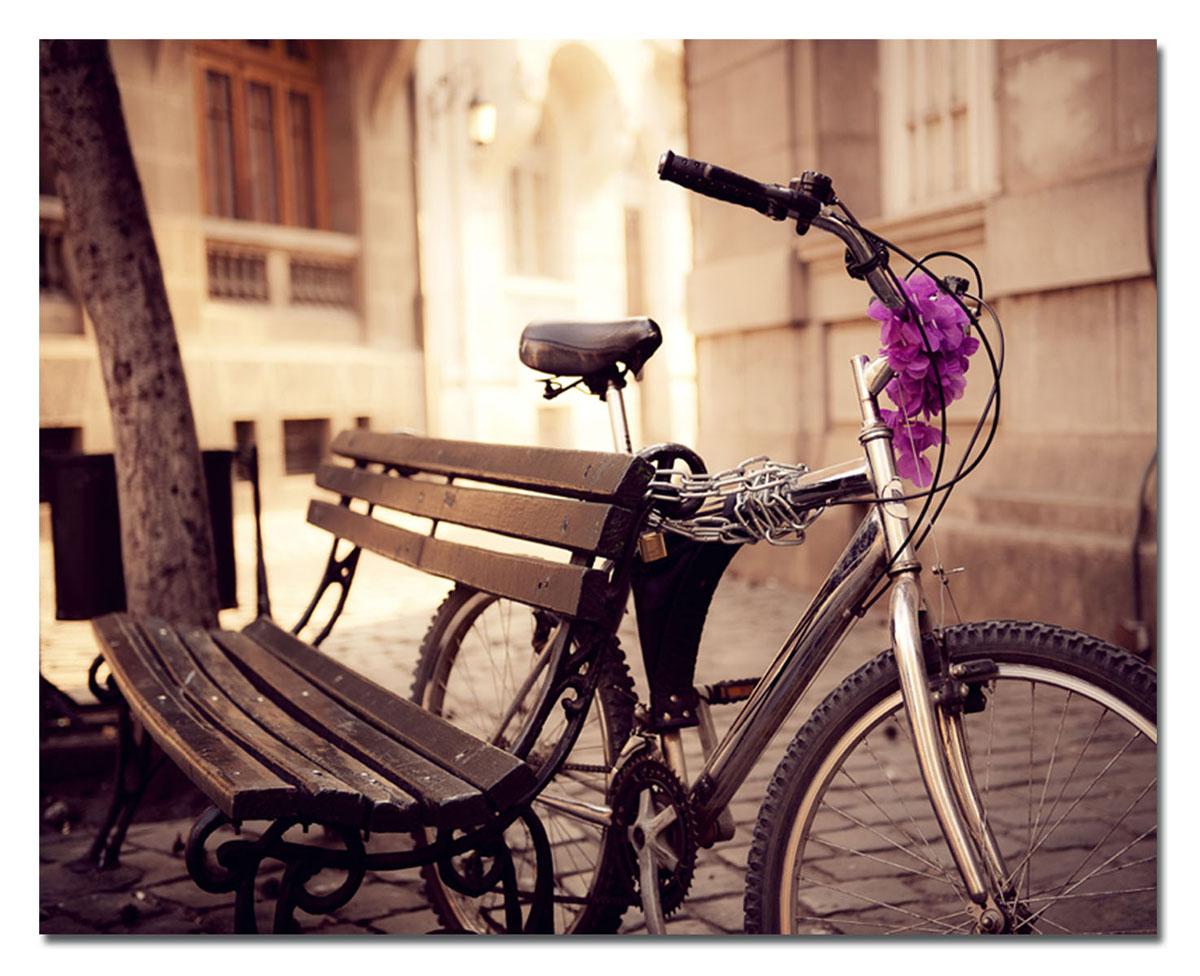 Канвас Idea Велосипед, 50 х 40 смAG 33-05Канвас - это ткань с художественной фотопечатью, натянутая на деревянный каркас. Такое изделие - оригинальный декоративный элемент, способный преобразить любой интерьер. Картина оформлена красочным изображением велосипеда, привязанного к скамейке. С задней стороны имеется петелька для подвешивания к стене. Стильный, современный дизайн, а также яркие и насыщенные цвета сделают эту картину прекрасным дополнением интерьера комнаты.