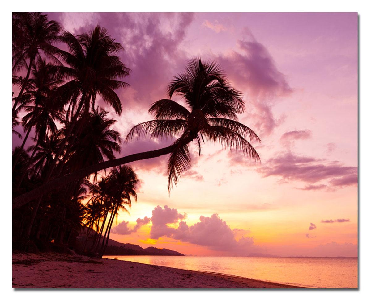Канвас Idea Пляж, 50 х 40 смRG-D31SКанвас - это ткань с художественной фотопечатью, натянутая на деревянный каркас. Такое изделие - оригинальный элемент, способный преобразить любой интерьер. Картина оформлена красочным изображением тропического пляжа. С задней стороны имеется петелька для подвешивания к стене. Стильный, современный дизайн, а также яркие и насыщенные цвета сделают эту картину прекрасным дополнением интерьера комнаты.