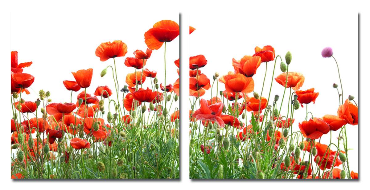 Канвас диптих Idea Красные цветы, 100 см х 50 см, 2 штSA-3004Канвас - это ткань (полиэстер) с художественной фотопечатью, натянутая на деревянный каркас. Диптих включает два элемента, которые образуют единый рисунок. Такое изделие - оригинальный декоративный элемент, способный преобразить любой интерьер. Картина оформлена красочным изображением красных цветов. С задней стороны имеются петельки для подвешивания к стене. Элементы следует размещать на стене, оставляя между ними небольшой промежуток.Стильный, современный дизайн, а также яркие и насыщенные цвета сделают эту картину прекрасным дополнением интерьера комнаты.Размер одного элемента: 50 см х 50 см. Общий размер диптиха: 100 см х 50 см.