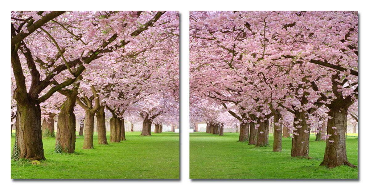 Канвас диптих Idea Сакура, 100 см х 50 см, 2 штRG-D31SКанвас Idea Сакура - это ткань (полиэстер) с художественной фотопечатью, натянутая на деревянный каркас. Диптих включает два элемента, которые образуют единый рисунок. Такое изделие - оригинальный декоративный элемент, способный преобразить любой интерьер. Картина оформлена красочным изображением цветущей сакуры. С оборотной стороны имеются отверстия для подвешивания к стене. Элементы следует размещать на стене, оставляя между ними небольшой промежуток.Стильный, современный дизайн, а также яркие и насыщенные цвета сделают эту картину прекрасным дополнением интерьера комнаты.Размер одного элемента: 50 см х 50 см. Общий размер диптиха: 100 см х 50 см.