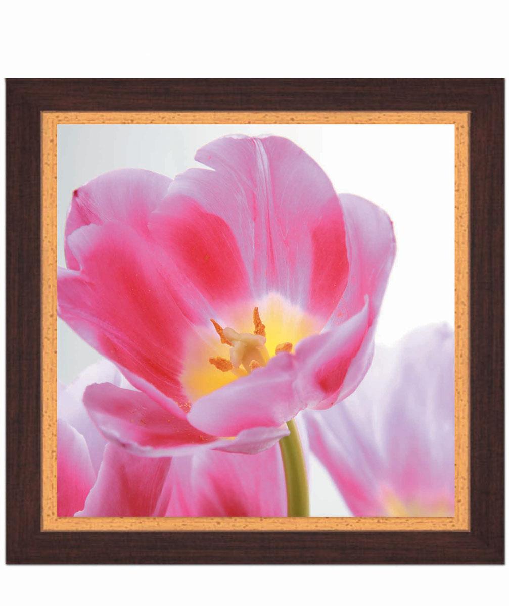 Постер в раме Postermarket Тюльпан, 30 см х 30 смAG 30-14Картина для интерьера (постер) - современное и актуальное направление в дизайне любых помещений.Постер с красочным изображением розового тюльпана оформлен в раму коричневого цвета, выполненную из пластика под дерево. Картина защищена прозрачным пластиком. С задней стороны имеется петелька для подвешивания к стене.Картина может использоваться для оформления любых интерьеров: - дом, квартира (гостиная, спальня, кухня, прихожая, детская); - офис (комната переговоров, холл, кабинет); - бар, кафе, ресторан или гостиница. Картины, предоставляемые компанией Постермаркет:- собраны вручную из лучших импортных комплектующих; - надежно упакованы в пленку с противоударными уголками.