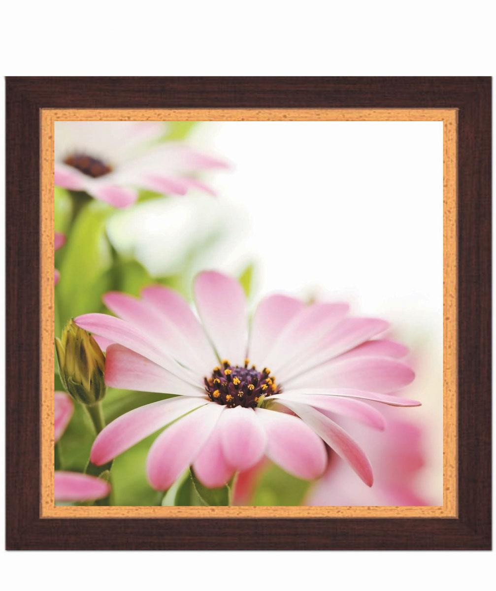 Постер в раме Postermarket Розовая хризантема, 30 х 30 см40x40 OZ133-50601Картина для интерьера (постер) - современное и актуальное направление в дизайне любых помещений.Постер с красочным изображением розовой хризантемы оформлен в раму коричневого цвета, выполненную из пластика под дерево. Картина защищена прозрачным пластиком. С задней стороны имеется петелька для подвешивания к стене.Картина может использоваться для оформления любых интерьеров: - дом, квартира (гостиная, спальня, кухня, прихожая, детская); - офис (комната переговоров, холл, кабинет); - бар, кафе, ресторан или гостиница. Картины, предоставляемые компанией Постермаркет:- собраны вручную из лучших импортных комплектующих; - надежно упакованы в пленку с противоударными уголками.