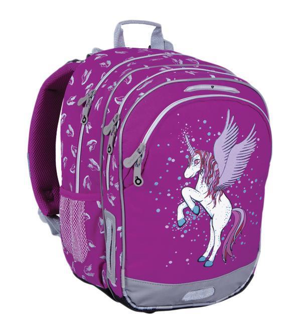 Рюкзак детский TOPGAL CHI-605 / I72523WDШкольный рюкзак с анатомической спинкой, которая не позволяет перегружать позвоночник ребенка. В комплект входит мешок для обуви и защитный чехол.