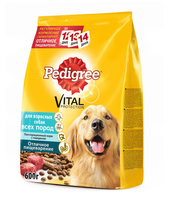 Корм сухой Pedigree для взрослых собак всех пород, с говядиной, 600 г101246Сухой рацион Pedigree - это полезный и вкусный корм, приготовленный по специальным рецептам с учетом физиологических потребностей собак.Особенности сухого корма Pedigree:оптимальный уровень кальция способствует укреплению зубов;ланолевая кислота, цинк и витамины группы В необходимы для здоровья кожи и шерсти;витамин Е и цинк поддерживают иммунную систему;высокоусвояемые ингредиенты и клетчатка обеспечивают оптимальное пищеварение. Состав: кукуруза, рис, куриная мука, кукурузный глютен, мясная мука (в том числе говядина минимум 4%), свекольный жом, морковь (минимум 4%), подсолнечное масло, жир животный, витамины и минералы.Пищевая ценность в 100 г: белки - 22 г, жиры - 11 г, зола - 7 г, клетчатка - 5 г, влажность - не более 10 г, кальций - 1,0 г, фосфор - 0,9 г, натрий - 0,3 г, калий - 0,58 г, магний - 0,1 г, цинк - 18 мг, медь - 1,5 мг, витамин А - 1500 МЕ, витамин Е - 30 мг, витамин D3 - 120 МЕ, а также витамины В2, В4, В5, В12, ниацин, омега-6, омега-3, полиненасыщенные жирные кислоты. Энергетическая ценность в 100 г: 355 ккал.Вес: 600 г.Товар сертифицирован.