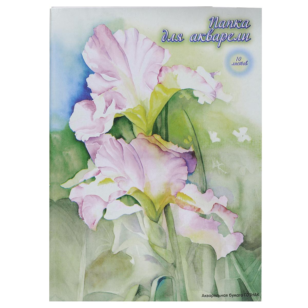 """Бумага ACTION! """"Цветок"""" предназначена для акварельных работ. Комплект содержит десять листов бумаги формата А3, упакованных в картонную папку с изображением цветка. Рекомендуемый возраст: от 6 лет."""