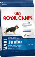 Корм сухой Royal Canin Maxi Junior, для щенков собак крупных размеров в возрасте до 15 месяцев, 15 кг0120710Сухой корм Royal Canin Maxi Junior - полнорационный сухой корм для щенков собак крупных размеров (вес взрослой собаки от 26 до 44 кг) в возрасте до 15 месяцев. Эксклюзивная комбинация питательных веществ обеспечивает безопасность пищеварения (L.I.P. белки) и баланскишечной флоры (пребиотики, ФОС, МОС), а также способствует нормальной консистенции стула. Продолжительный рост - умеренная калорийность. Удовлетворяет умеренные энергетические потребностищенков крупных пород с продолжительным периодом роста. Укрепление костей и суставов. Способствует хорошей минерализации скелета у щенков крупных пород благодарясбалансированному содержанию калорий и минералов (кальция и фосфора), укрепляя таким образом кости исуставы.Естественные механизмы защиты.Способствует поддержанию естественных защитных сил организма щенка благодаря запатентованному комплексу антиоксидантов.Состав: рис, дегидратированные белки животного происхождения (птица), дегидратированные белки животногопроисхождения (свинина), кукурузная мука, животные жиры, гидролизат белков животного происхождения,кукурузная клейковина, кукуруза, минеральные вещества, свекольный жом, растительная клетчатка, изолятрастительных белков, соевое масло, рыбий жир, оболочка и семена подорожника, фруктоолигосахариды,гидролизат дрожжей (источник мaннановых олигосахаридов), гидролизат из панциря ракообразных (источникглюкозамина), экстракт бархатцев прямостоячих (источник лютеина), гидролизат из хряща (источникхондроитина). Добавки (в 1 кг): Витамин A: 11600 ME, Витамин D3: 1000 ME,Железо: 48 мг, Йод: 3,7 мг, Марганец: 63 мг, Цинк: 206 мг, Ceлeн: 0,08 мг. Содержание питательных веществ: белки 30%, жиры 16%, минеральные вещества 8,5%, клетчатка пищевая 2,7%,медь 15 мг/кг.Товар сертифицирован.