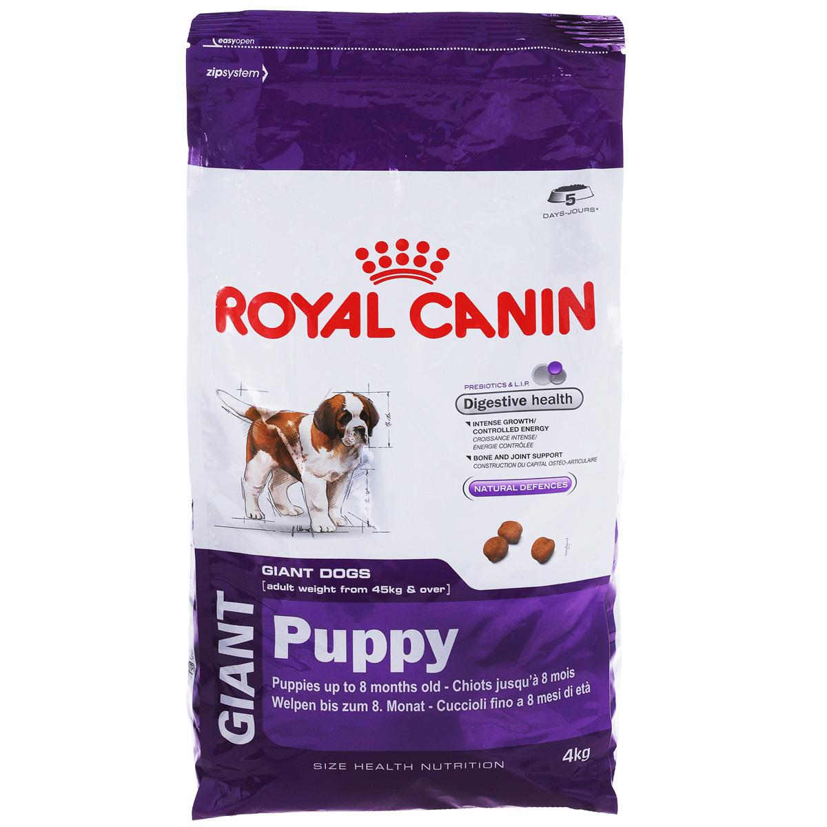 Корм сухой Royal Canin Giant Puppy, для щенков собак очень крупных размеров от 2 до 8 месяцев, 4 кг195040Сухой корм Royal Canin Giant Puppy - это полнорационный сухой корм для щенков собакочень крупных размеров (вес взрослой собаки более 45 кг) в возрасте с 2 до 8месяцев.Ключевые преимущества: - Максимальная пищевая переносимость. Формула с содержанием высококачественных белков L.I.P, а также пребиотиков - фруктоолигосахаридов и маннановых олигосахаридов, оказывает благоприятное воздействие на пищеварительную систему и поддерживает оптимальную консистенцию стула;- Интенсивный рост (сбалансированное содержание энергии). Формулаобеспечивает потребности в питательных веществах во время первой фазыроста щенков гигантских собак и предотвращает набор лишнего веса благодаряадаптированному содержанию энергии; - Здоровье костей и суставов. Формула с оптимальным уровнем энергии иминералов (кальция и фосфора) способствует поддержанию костей и суставовщенков собак очень крупных размеров в период роста; - Естественные механизмы защиты.Способствует поддержанию естественных защитных сил организма щенка благодаря запатентованному комплексу антиоксидантов и манноолигосахаридов.Состав: дегидратированные белки животного происхождения (птица), рис,изолят растительных белков, кукуруза, животные жиры, гидролизат белковживотного происхождения, свекольный жом, минеральные вещества, соевоемасло, дрожжи, рыбий жир, фруктоолигосахариды, оболочка и семенаподорожника, гидролизат дрожжей (источник мaннановых олигосахаридов),гидролизат из панциря ракообразных (источник глюкозамина), экстрактбархатцев прямостоячих (источник лютеина), гидролизат из хряща (источникхондроитина). Питательные вещества: минеральные вещества 7,6%, клетчатка сырая 1,3%,пищевые волокна 6,4%, жиры 17,0%, линолевая кислота 3,1%, метаболическаяэнергия NRC 85 (по Атуотеру) 3706 ккал/кг, измеренная обменная энергия 3961ккал/кг, влажность 9,5%, безазотистые экстрактивные вещества 31,6%, жирныекислоты Омега 6 3,27%, белки 33,0%, 