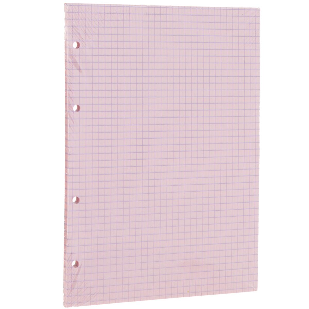 Сменный блок в клетку Erich Krause, для тетрадей на кольцах, цвет: розовый, 80 листов72523WDСменный блок Erich Krause предназначен для тетрадей с кольцевым механизмом. Листы выполнены из бумаги розового цвета в голубую клетку.