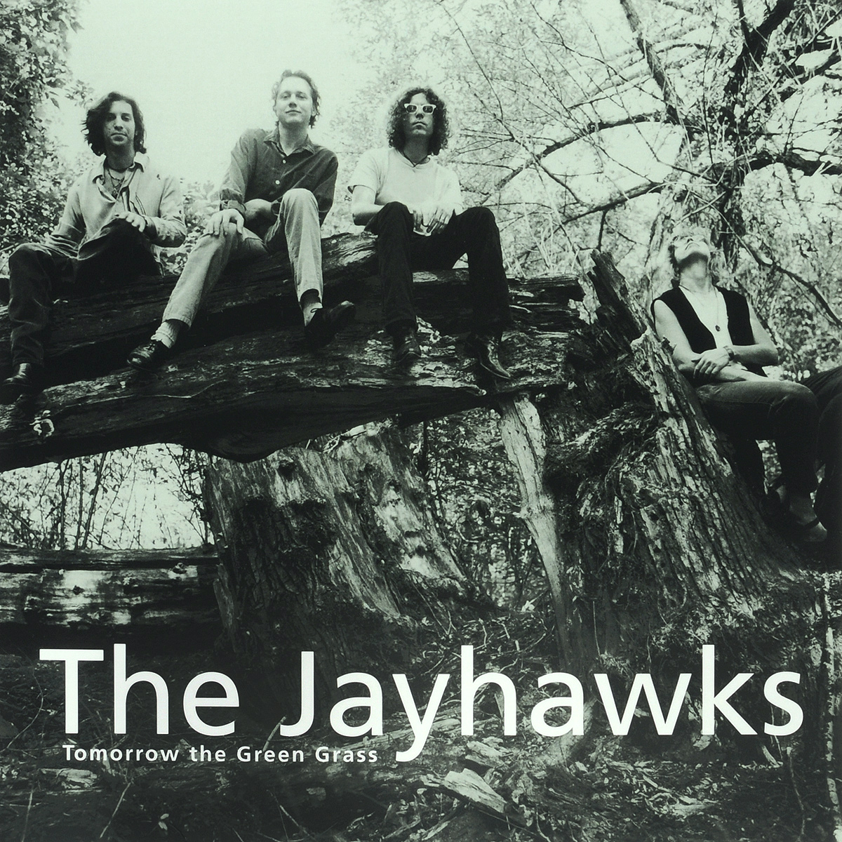 The Jayhawks The Jayhawks. Tomorrow The Green Grass (LP) the giver