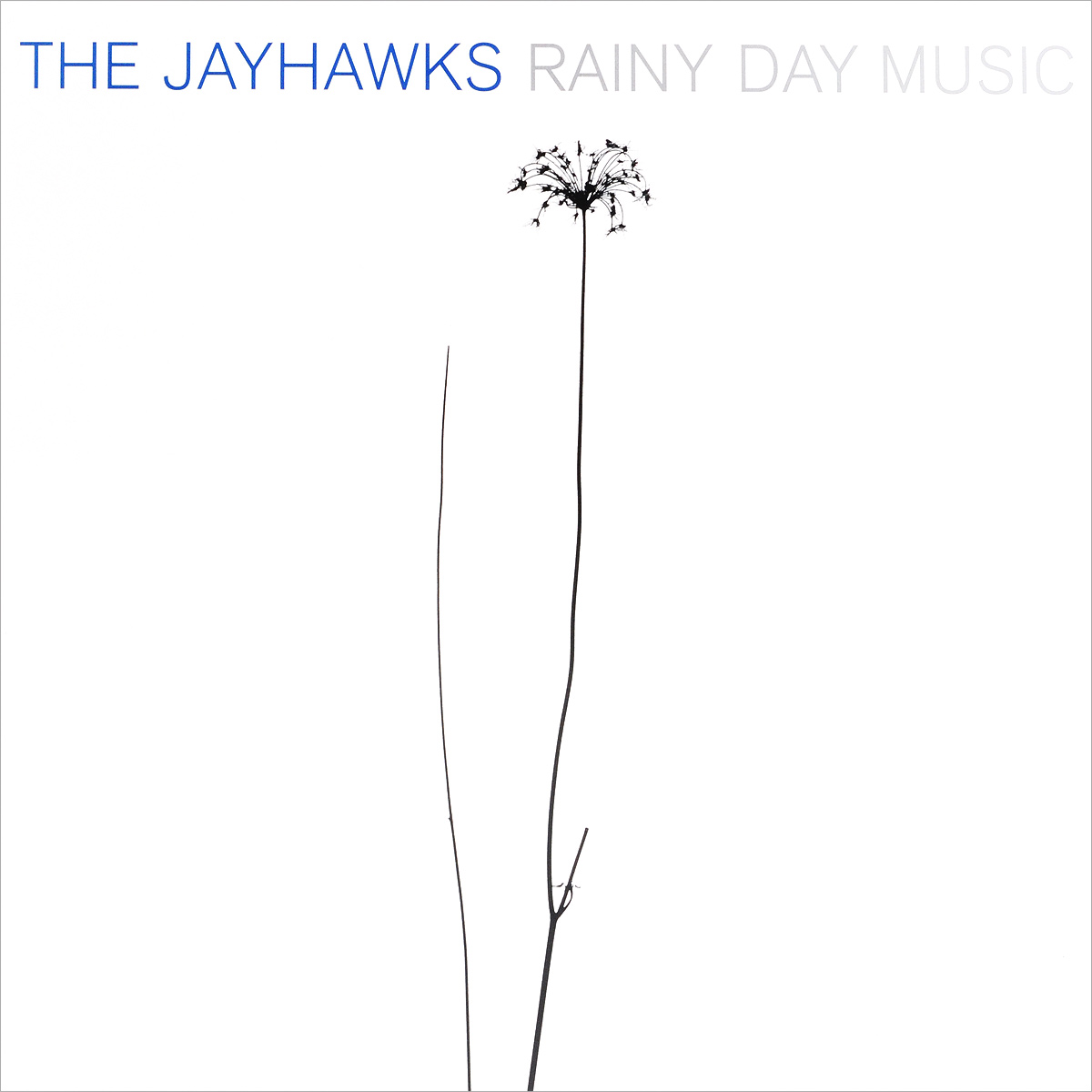 The Jayhawks The Jayhawks. Rainy Day Music (2 LP) the heir