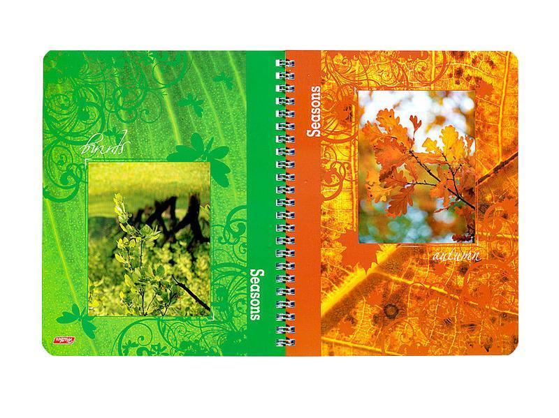 Тетрадь двойная с 4-мя обложками 96л А5ф на гребне-Времена года-96Тд5B1_06499Тетрадь двойная с обложками-перевертышами. Четыредизайна обложки. 96 листов. Внутренний блок60 гр/кв.м. Тип разметки: В клетку; тип бумаги: Шелковисто-матовая; формат: А5; обложка: картон; пол: унисекс; возраст: старшие классы; способ крепления: Гребень; упаковка: Коробка картонная