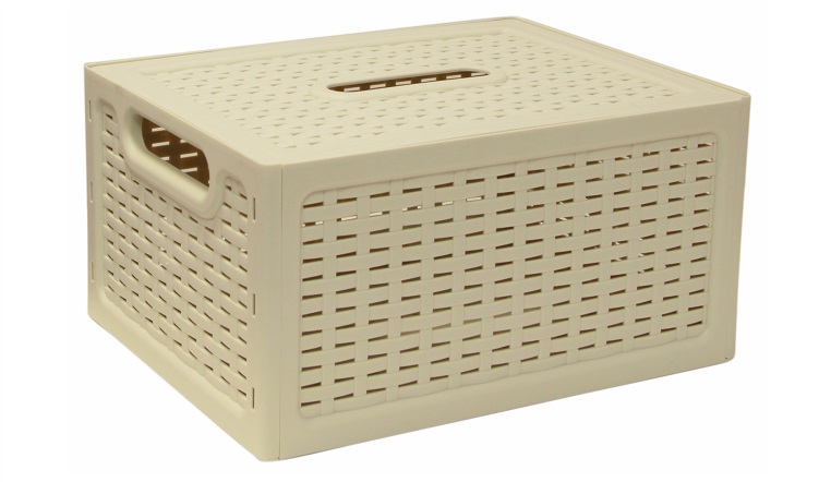 Ящик универсальный Idea Ротанг, с крышкой, цвет: белый, 28 х 18,5 х 14,5 см710523Универсальный ящик Idea Ротанг выполнен из пищевого пластика и предназначен для хранения различных предметов и аксессуаров. Ящик оснащен крышкой и двумя ручками для удобной переноски. Элегантный выдержанный дизайн изделия позволяет органично вписаться в ваш интерьер и стать его элементом.