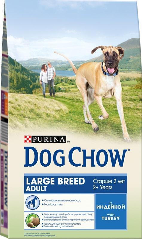 Корм сухой Dog Chow для взрослых собак крупных пород, с индейкой, 2,5 кг0120710Сухой корм Dog Chow - 100% полнорационный и сбалансированный корм для собак крупных пород от 2 лет, с индейкой. Содержит много мяса и помогает взрослым собакам крупных пород (с массой тела >25 кг) поддерживать оптимальную массу тела и сохранять высокую подвижность. Оптимальное соотношение белков и жиров помогает вашей собаке оставаться подтянутой и сохранять гармоничное телосложение. Незаменимые аминокислоты для поддержания функции жизненно важных органов, включая сердце. Специальные омега-3 жирные кислоты способствуют сохранению хорошей подвижности и благоприятно воздействуют на суставы. Корм содержит омега-6 жирную кислоту и цинк для поддержания естественной влаги и эластичности кожи. Содержит натуральный пребиотик, улучшающий работу пищеварительной системы. Цикорий - источник натурального пребиотика, который, как показали исследования, способствует росту численности полезных кишечных бактерий и нормализации деятельности пищеварительной системы. Гранулы двух видов для гигиены полости рта. Специальная форма и текстура гранул способствует легкому пережевыванию и поддержанию здоровья полости рта. Наши диетологи тщательно протестировали это сочетание гранул, чтобы убедиться в том, что оно подходит и нравится взрослым собакам различных пород. Состав: злаки, мясо и продукты переработки мяса (8%), продукты переработки сырья растительного происхождения, масла и жиры, экстракт растительного белка, овощи (сухой корень цикория), минеральные вещества, витамины, антиоксиданты. Добавленные вещества (на 1 кг): витамин А 18200 МЕ, витамин D3 1060 МЕ, витамин Е 85 МЕ, железо 75,6 мг, йод 1,8 мг, медь 8,4 мг, марганец 5,7 мг, цинк 135,8 мг, селен 0,18 мг. Гарантируемые показатели: белок 23%, жир 9%, сырая зола 8%, сырая клетчатка 3%, Омега-3 жирные кислоты (ЭПК+ДГК) 0,2%.Вес: 2,5 кг. Товар сертифицирован.