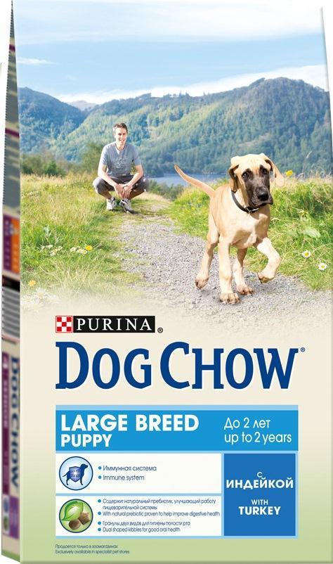 Корм сухой Dog Chow для щенков крупных пород, с индейкой, 2,5 кг0120710Корм сухой Dog Chow - полнорационный и сбалансированный корм для щенков крупных пород до 2 лет с индейкой. Подходит для кормления беременных и лактирующих собак крупных пород. Высокое содержание мяса. Создан специально для поддержания естественных защитных механизмов и обеспечения правильного роста щенков крупных пород (ожидаемая масса тела взрослой собаки >25 кг). Иммунная система. Корм содержит витамин Е, который в качестве антиоксиданта участвует в борьбе со свободными радикалами и укрепляет естественную защиту организма. Необходимые минеральные элементы и витамины для формирования крепких зубов и костей. Оптимальное соотношение белков и жиров для гармоничного роста вашего щенка крупной породы. Содержит омега-3 жирную кислоту, необходимую для развития головного мозга и зрительного аппарата. Гранулы двух видов помогают щенку научиться пережевывать пищу, что способствует формированию правильного пищевого поведения, обеспечивает достаточное потребление калорий и гигиену ротовой полости с первых дней жизни. Наши диетологи тщательно протестировали это сочетание гранул для гарантии того, что они подходят и нравятся собакам различных пород. Содержит натуральный пребиотик, улучшающий работу пищеварительной системы. В состав кормов входит цикорий - источник натурального пребиотика, который, как показали исследования, способствует росту численности полезных кишечных бактерий и нормализации деятельности пищеварительной системы. Через 30 дней питания кормом Dog Chow количество бифидобактерий может возрастать в 100 раз, помогая Вашей собаке сохранять хорошее пищеварение. Состав: злаки, мясо и продукты переработки мяса (8%), продукты переработки сырья растительного происхождения, масла и жиры, экстракт растительного белка, овощи (сухой корень цикория), минеральные вещества, витамины, антиоксиданты. Добавленные вещества (на 1 кг): витамин А 22600 МЕ, витамин D3 1300 МЕ, витамин Е 105 МЕ, железо 93,9 мг, йод 