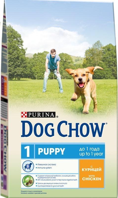 Корм сухой для щенков Dog Chow, с курицей, 14 кг0120710Корм сухой Dog Chow - полнорационный корм для щенков, с курицей. Подходит для кормления беременных и лактирующих собак, а также взрослых собак мелких пород.Иммунная система. Корм для щенков содержит витамин Е, который в качестве антиоксиданта участвует в борьбе со свободными радикалами и укрепляет естественную защиту организма. Содержит натуральный пребиотик, улучшающий работу пищеварительной системы. Цикорий - источник натурального пребиотика, который, как показали исследования, способствует росту численности полезных кишечных бактерий и нормализации деятельности пищеварительной системы. Через 30 дней питания кормом Dog Chow количество бифидобактерий может возрастать в 100 раз, помогая вашей собаке сохранять хорошее пищеварение. Гранулы двух видов помогают щенку научиться пережевывать пищу, что способствует формированию правильного пищевого поведения, обеспечивает достаточное потребление калорий и гигиену ротовой полости с первых дней жизни. Наши диетологи тщательно протестировали это сочетание гранул для гарантии того, что они подходят и нравятся собакам различных пород. Высокое содержание белка и жира для восполнения запасов энергии в организме вашего активного щенка. Необходимые минеральные элементы и витамины для формирования крепких зубов и костей. Содержит омега-3 жирную кислоту, необходимую для развития головного мозга и зрительного аппарата.Состав: злаки, мясо и продукты переработки мяса (8%), продукты переработки сырья растительного происхождения, масла и жиры, экстракт растительного белка, овощи (сухой корень цикория), минеральные вещества, витамины, антиоксиданты. Добавленные вещества (на 1 кг): витамин А 22600 МЕ, витамин D3 1300 МЕ, витамин Е 105 МЕ, железо 93,8 мг, йод 2,3 мг, медь 10,4 мг, марганец 7,1 мг, цинк 168,6 мг, селен 0,23 мг. Гарантируемые показатели: белок 28%, жир 14%, сырая зола 7,5%, сырая клетчатка 2,5%, Омега-3 жирные кислоты 0,05%.Вес: 14 кг.Товар сертифицирован.
