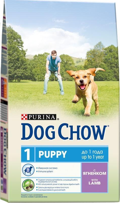 Корм сухой для щенков Dog Chow, с ягненком, 2,5 кг0120710Корм сухой Dog Chow - полнорационный корм для щенков до 1 года с ягненком. Подходит для кормления беременных и лактирующих собак, а также взрослых собак мелких пород.Иммунная система. Корм для щенков содержит витамин Е, который в качестве антиоксиданта участвует в борьбе со свободными радикалами и укрепляет естественную защиту организма. Содержит натуральный пребиотик, улучшающий работу пищеварительной системы. Цикорий - источник натурального пребиотика, который, как показали исследования, способствует росту численности полезных кишечных бактерий и нормализации деятельности пищеварительной системы. Через 30 дней питания кормом Dog Chow количество бифидобактерий может возрастать в 100 раз, помогая вашей собаке сохранять хорошее пищеварение. Гранулы двух видов помогают щенку научиться пережевывать пищу, что способствует формированию правильного пищевого поведения, обеспечивает достаточное потребление калорий и гигиену ротовой полости с первых дней жизни. Наши диетологи тщательно протестировали это сочетание гранул для гарантии того, что они подходят и нравятся собакам различных пород. Высокое содержание белка и жира для восполнения запасов энергии в организме вашего активного щенка. Необходимые минеральные элементы и витамины для формирования крепких зубов и костей. Содержит омега-3 жирную кислоту, необходимую для развития головного мозга и зрительного аппарата.Состав: злаки, мясо и продукты переработки мяса (8%), продукты переработки сырья растительного происхождения, масла и жиры, экстракт растительного белка, овощи (сухой корень цикория 1,1%), минеральные вещества, витамины. Добавленные вещества (на 1 кг): витамин А 22600 МЕ, витамин D3 1300 МЕ, витамин Е 105 МЕ, железо 93 мг, йод 2,3 мг, медь 10,4 мг, марганец 7,1 мг, цинк 168 мг, селен 0,23 мг. Гарантируемые показатели: белок 28%, жир 14%, сырая зола 7,5%, сырая клетчатка 2,5%, Омега-3 жирные кислоты 0,05%.Вес: 2,5 кг. Товар сертифицирован.