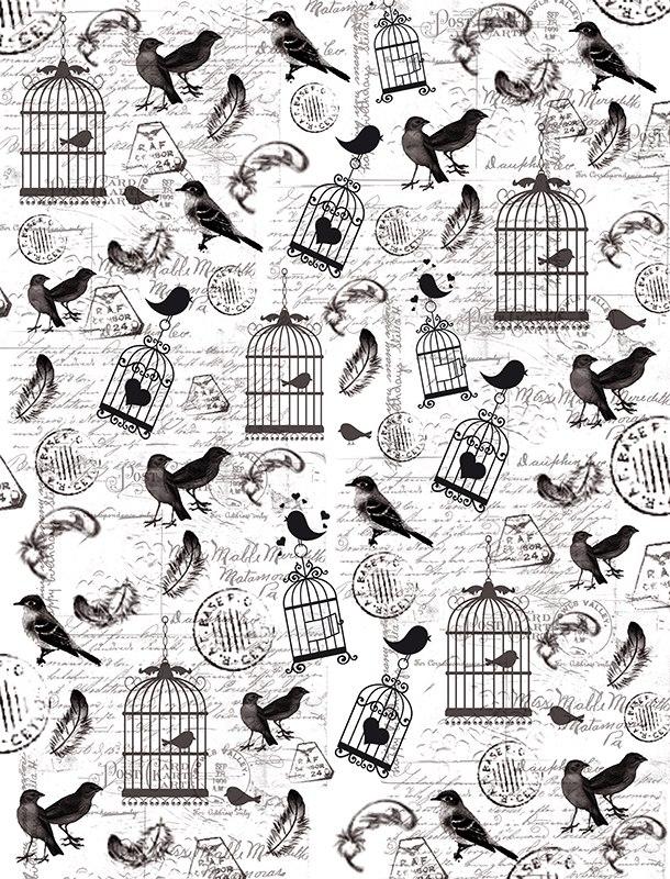 Пленка-оверлей для скрапбукинга Птички и клетки, 21 см х 30 см55052Пленка-оверлей Птички и клетки - прозрачная пленка с нанесенным рисунком. Используется чаще всего в скрапбукинге для декорирования фотографий, альбомов, открыток, блокнотов, сувенирных книг и прочего. Для крепления пленки используются разные способы - люверсы, машинная строчка, можно привязать ленточкой, сделав надрез или отверстие, можно приклеить на клей (двухсторонний скотч, и т.п.) и задекорировать это место другими элементами украшений (цветочками, ленточками, пуговками, аппликациями). На пленке можно писать перманентной ручкой или маркером.