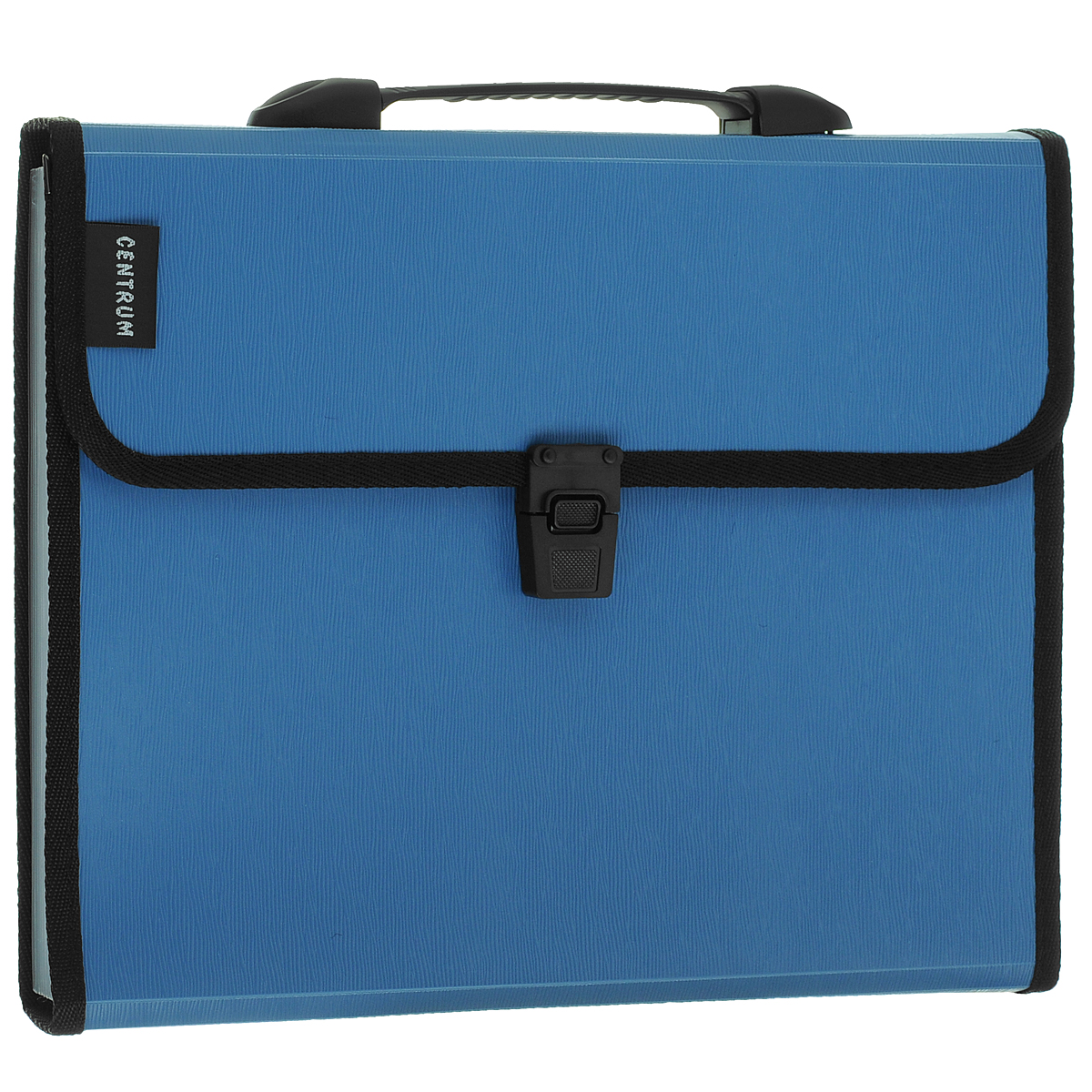 Папка-портфель Centrum, 13 отделений, с ручкой, цвет: голубой. Формат А482261СинПапка-портфель Centrum станет вашим верным помощником дома и в офисе. Это удобный и функциональный инструмент, предназначенный для хранения и транспортировки больших объемов рабочих бумаг и документов формата А4.Папка изготовлена из износостойкого высококачественного пластика толщиной 0,75 мм, и закрывается на широкий клапан с замком. Состоит из 13 вместительных отделений. Папка оформлена тиснением под дерево. Грани папки отделаны полиэстером для дополнительной прочности и сохранности опрятного вида папки. Папка имеет удобную ручку для переноски.Папка - это незаменимый атрибут для любого студента, школьника или офисного работника. Такая папка надежно сохранит ваши бумаги и сбережет их от повреждений, пыли и влаги.