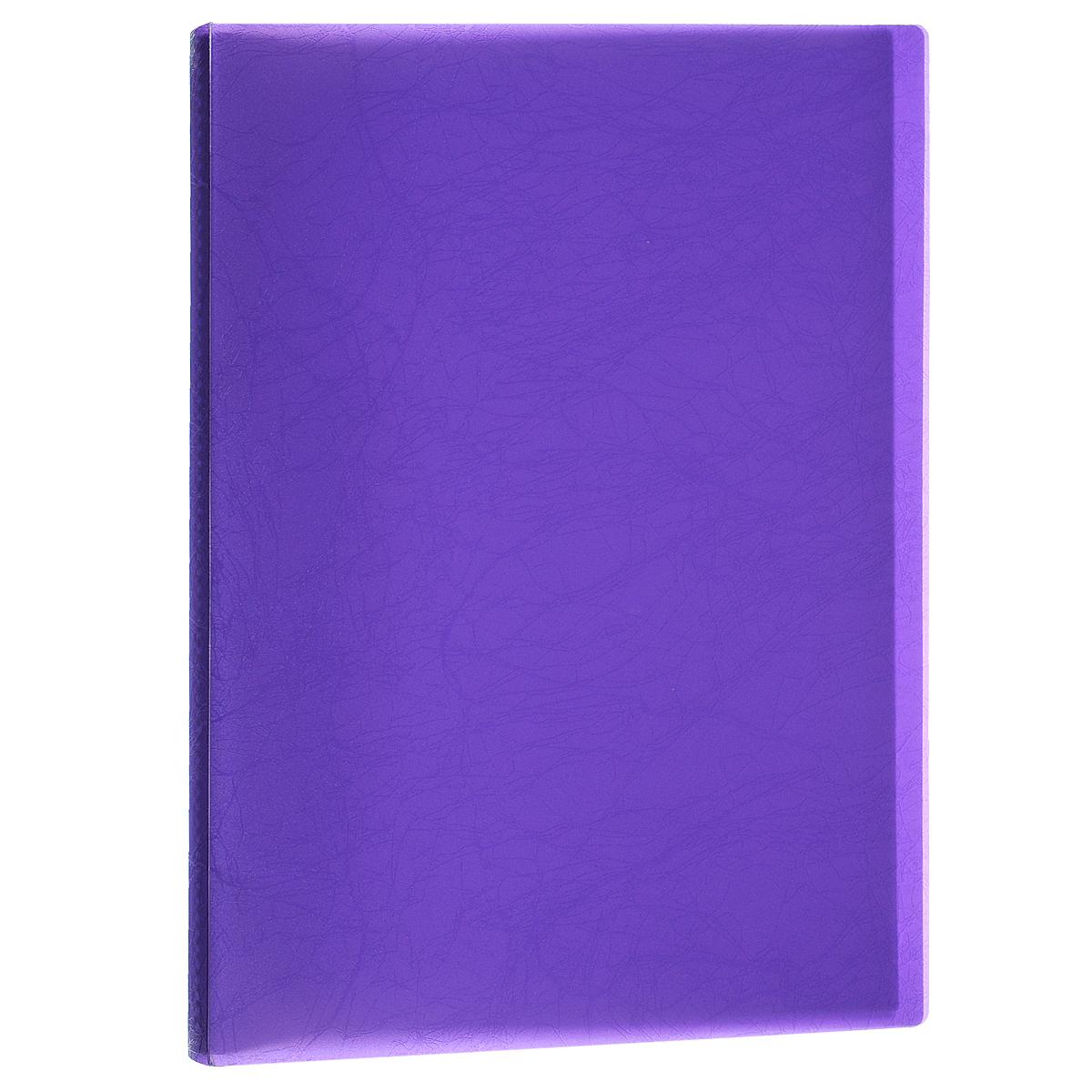 Папка Centrum, 20 файлов, цвет: фиолетовый. Формат А439057Папка Centrum - это удобный и функциональный офисный инструмент, предназначенный для хранения и транспортировки рабочих бумаг и документов формата А4.Папка изготовлена из прочного высококачественного пластика и включает в себя 20 прозрачных вкладышей-файлов. Обложка папки оформлена тиснением под кожу. Папка имеет опрятный и неброский вид. Уголки папки имеют закругленную форму, что предотвращает их загибание и помогает надолго сохранить опрятный вид обложки.Папка - это незаменимый атрибут для любого студента, школьника или офисного работника. Такая папка надежно сохранит ваши бумаги и сбережет их от повреждений, пыли и влаги.