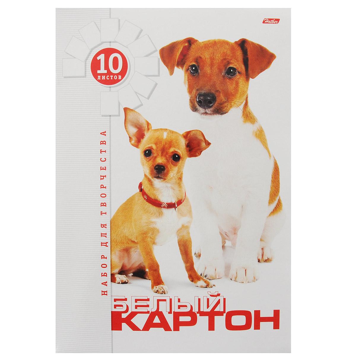 Картон Hatber Два щенка, цвет: белый, 10 листовSTP64020Картон Hatber Два щенка позволит вашему ребенку создавать всевозможные аппликации и поделки. Набор состоит из десяти листов картона белого цвета с полуглянцевым покрытием формата А4. Картон упакован в оригинальную картонную папку, оформленную изображением двух щенков. На внутренней стороне обложки расположена раскраска в виде доброго щенка.Создание поделок из картона поможет ребенку в развитии творческихспособностей, кроме того, это увлекательный досуг.Рекомендуемый возраст от 6 лет.